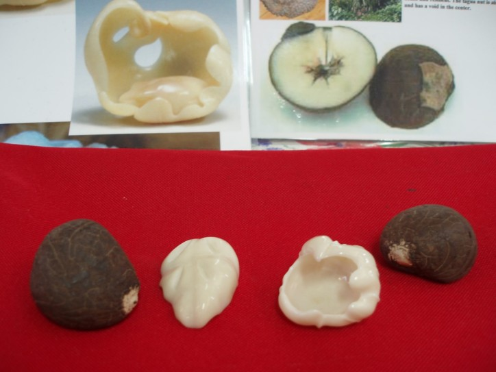 Tagua nut carving