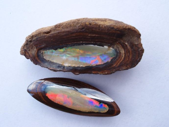 Yowah Nuts, QLD
