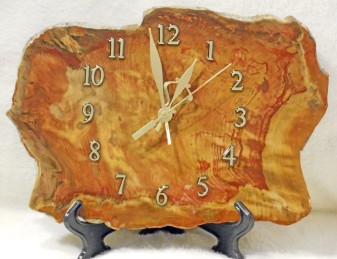 Fossilised Wood Clock